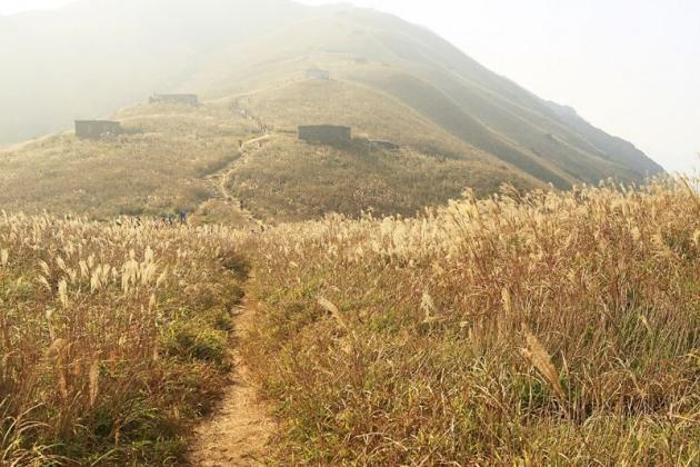 尋覓四分之三香港~郊野行山、穿村、攝影、米芝蓮美食5日 6